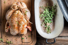 Spiced chicken before roasting Royalty Free Stock Images