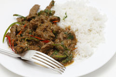 Spiced lamb curry meal with fork Royalty Free Stock Photo