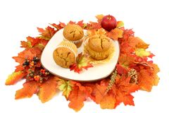 Spiced Pumpkin Muffins With Fall Leaves. Three spice pumpkin muffins on a square plate surrounded by a collection of autumn colored silk leaves Stock Photo