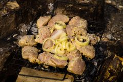 Spiced raw pork meat on grill outdoor. Preparation of shish kebab Royalty Free Stock Photography
