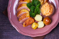 Spiced slow roast duck, apple sauce, spinach and potato, served on pink plate Stock Images
