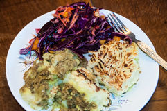 Spiced up shepherd`s pie and red cabbage Stock Photos
