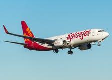Spicejet Boeing 737-800 con i winglets Fotografia Stock