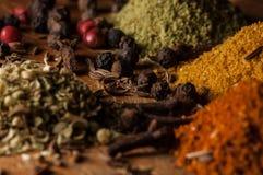 Spicery, peper, Spaanse peper, kaneel stock foto