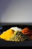 spices вертикаль Стоковая Фотография RF