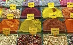 Spices выбор Стоковые Фото