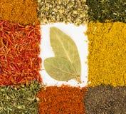 Spices макрос украшенный как рамка Стоковые Фотографии RF