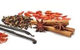 spices различное стоковое фото