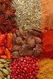 spices различное Стоковые Фотографии RF