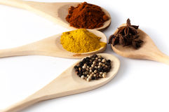 spices разнообразие Стоковые Фотографии RF