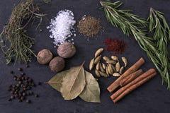 spices различное Стоковые Изображения