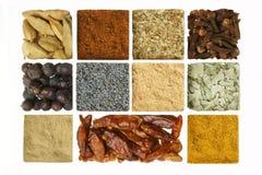 Spices собрание на белой предпосылке Стоковая Фотография RF