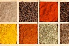 Spices собрание. стоковые изображения