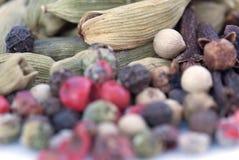 Spices фасоли (текстуры макроса) Стоковые Изображения RF