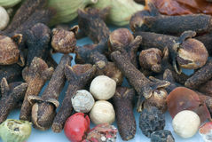 Spices фасоли (текстуры макроса) Стоковое фото RF
