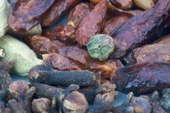 Spices фасоли (текстуры макроса) Стоковое Изображение