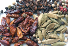 Spices фасоли (текстуры макроса) Стоковая Фотография RF