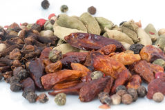 Spices фасоли (текстуры макроса) Стоковые Изображения