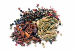 Spices фасоли (текстуры макроса) Стоковые Фотографии RF