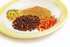 Spices 1. Collection of 3 different spices in a plate, high key style stock image