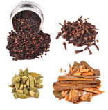 Spices. Hot spices items on white Stock Image