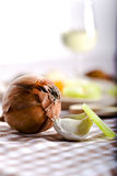 Spices. Onion and pepper in a beaudiful background Royalty Free Stock Image