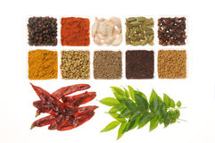 Spices. From India state Andhra Stock Image