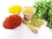 Free Spices Stock Images - 13788344