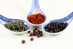 Spices. Collection of spices, on white background Stock Photography