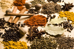 Spices. Various spices over a light wooden background Stock Image