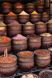 Spices. Royalty Free Stock Photo