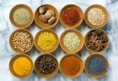 земля spices все Стоковая Фотография