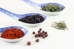 Spices. Collection of spices, narrow focus Stock Images