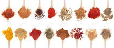 собрание spices ложки Стоковые Изображения