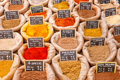 Spices. Stock Images
