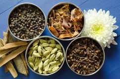 Spices. Indian spices for aroma and taste in gravy and other food royalty free stock photo