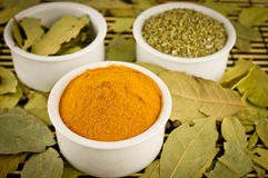 Spices. Marjoram, bay leaf, chili Stock Photography