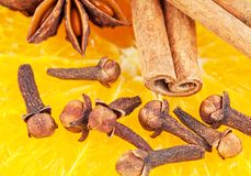 The spices Royalty Free Stock Photos