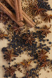 Spices Royalty Free Stock Photo