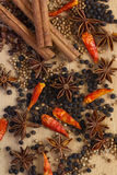 Spices. Variety of Spices and herbs,Food and cuisine ingredients Stock Photography