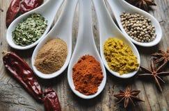 Spices Stock Photo
