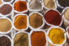 Spices. Stock Photography