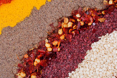 Spices. Arranged as a diagonal background Stock Photography
