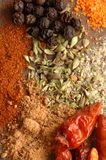 Spices. Several Spice group to cook Royalty Free Stock Image