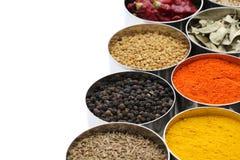 Индеец spices собрание Стоковые Изображения