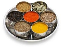 Индеец spices собрание Стоковые Фото