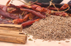 Spices. Cumin Seed, Red Peppers and Cinnamon, Shallow DOF Stock Photos