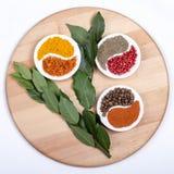 Spices011 Fotografia de Stock