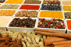 Spices. Stock Image
