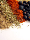 Spices. Closeup of various colorful spices over white Stock Photography